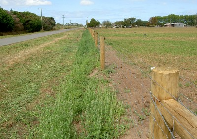 Rural fencing Canterbury